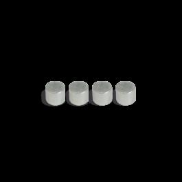 Imanes 4 (9x10mm) 21058